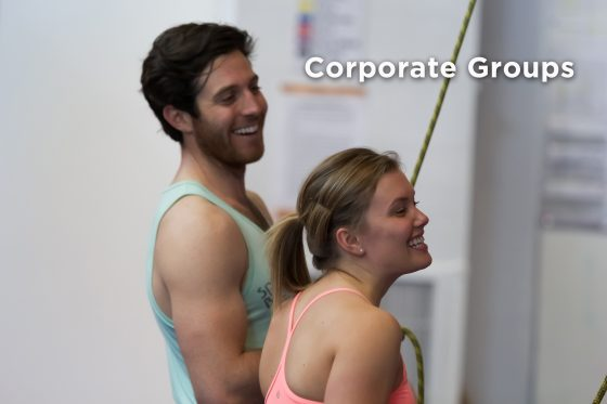Corporate Groups